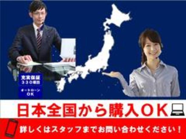 G 純正SDナビ バックカメラ フルセグTV オートエアコン ETC プッシュスタート(48枚目)
