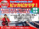 ライダー エマージェンシーブレーキ 純正ナビ BT LEDオートライト(18枚目)