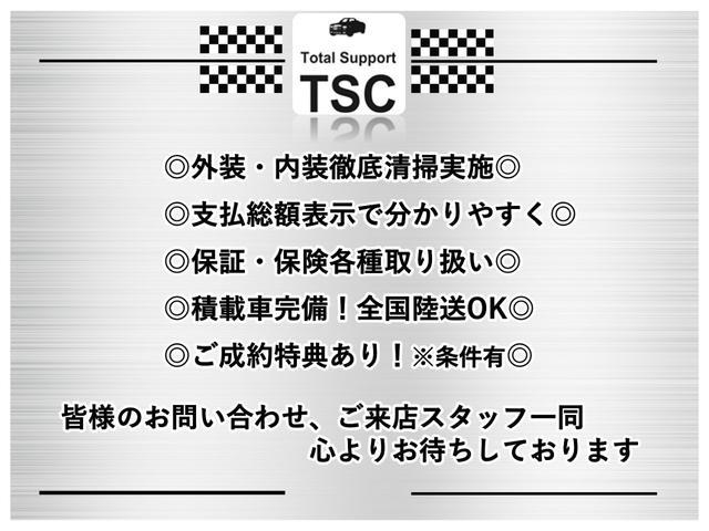 プラスハナCパッケージTVナビ バックカメラ スマートキー(3枚目)