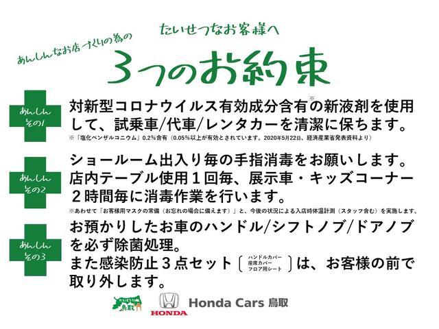 G・EX サイドリフトアップシート車 純正7インチナビ リアカメラ DVD 地デジ CD USB HDMI Bluetooth 両側電動スライドドア サイドエアバッグ ホンダセンシング ETC オートライト(3枚目)