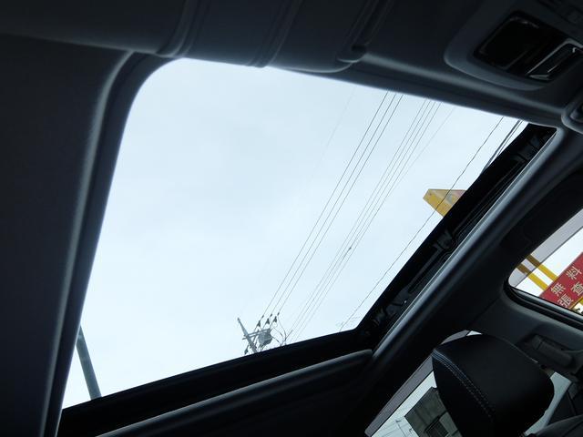 S-Limited EyeSight ナビ カメラ ETC(20枚目)
