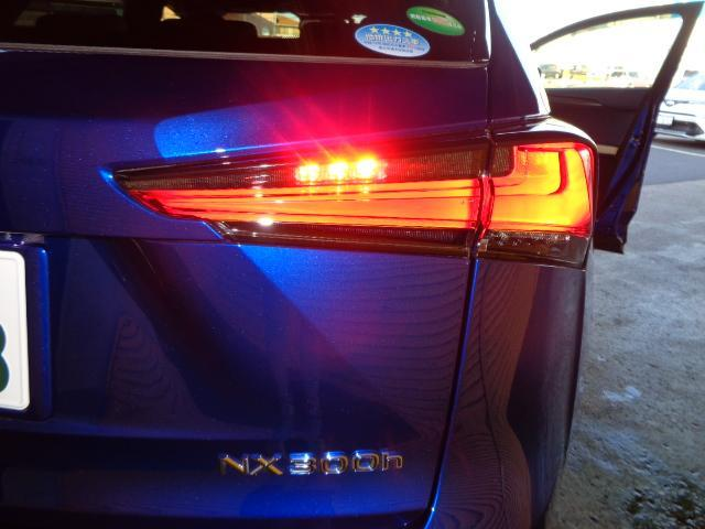 NX300h Fスポーツ パノラミックビューモニター(18枚目)