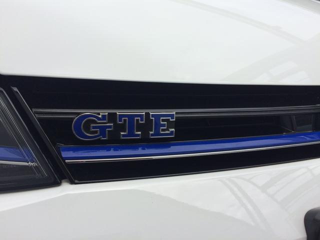 GTIの系譜に連なるGTE。