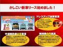 PA エアロ バス仕様 4WD 内装替 革調席 HDDナビ(42枚目)