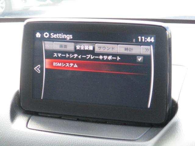 13S 1.3 13S バックカメラ CD/DVDプレーヤー(44枚目)