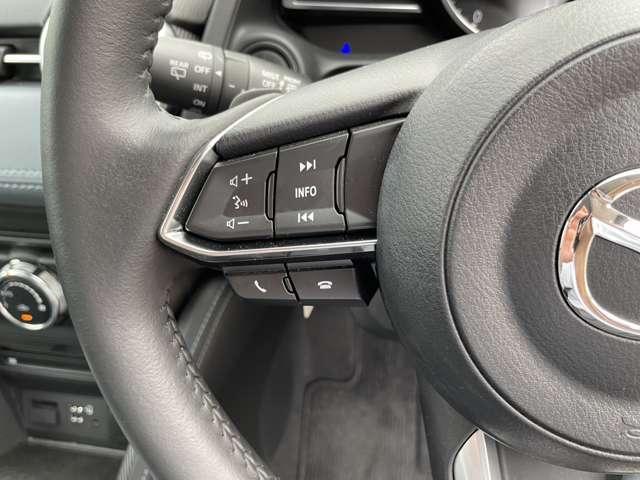 XD Lパッケージ 衝突被害軽減ブレーキ レーダークルーズコントロール 革シート 純正ナビ フルセグTV CD/DVD 全方位カメラ(18枚目)