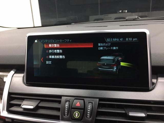 218dATラグジュアリ 後期 黒革 コンフォP Pサポート(18枚目)