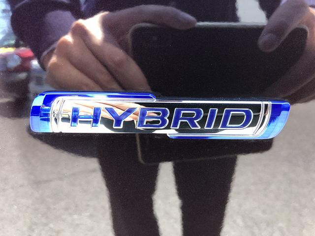 スティングレー HYBRID T(13枚目)