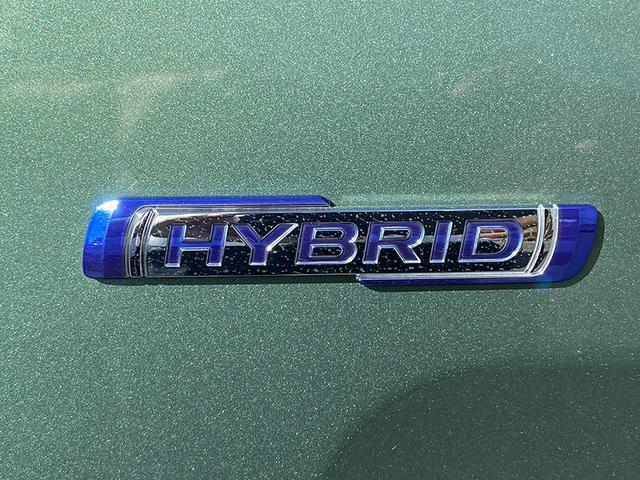 HYBRID X 衝突被害軽減ブレーキ 両側電動スライドドア(13枚目)