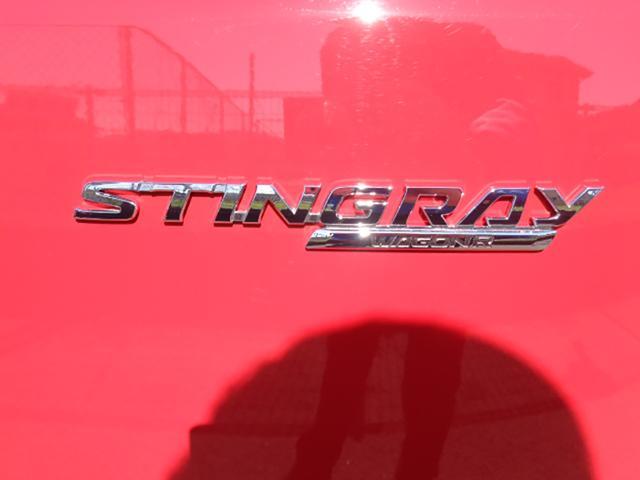 スティングレー HYBRID X(19枚目)