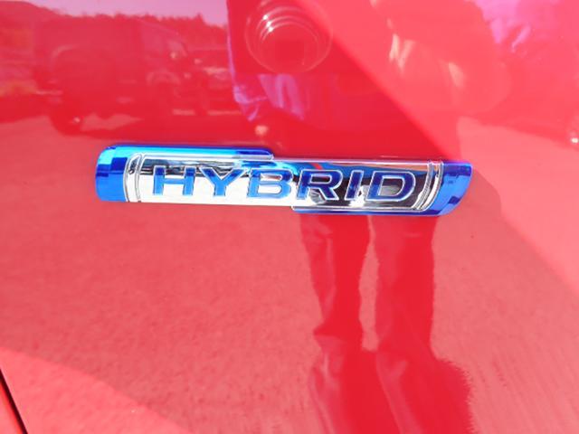 スティングレー HYBRID X(20枚目)