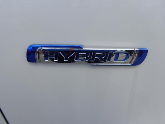 スティングレー HYBRID X(6枚目)