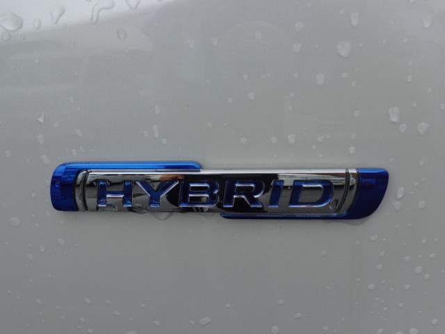 スティングレー HYBRID X(8枚目)