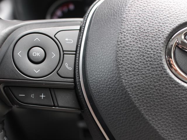 アドベンチャー サンルーフ 4WD フルセグ DVD再生 バックカメラ 衝突被害軽減システム ETC ドラレコ LEDヘッドランプ 記録簿(14枚目)