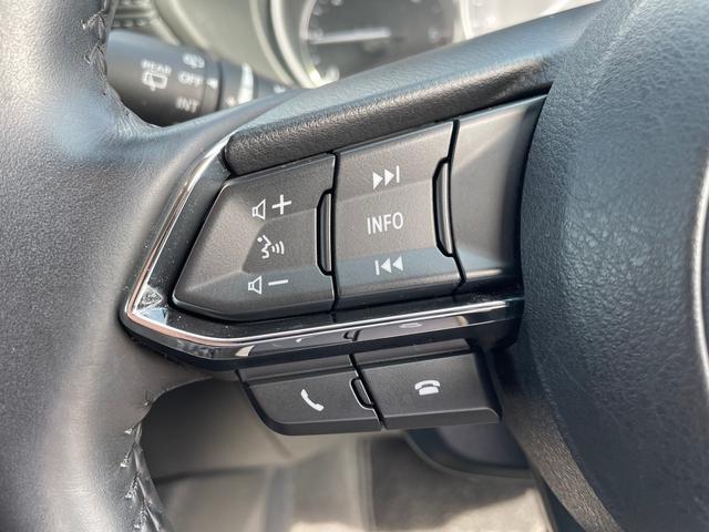 XD プロアクティブ ドライブレコーダー/ETC/全周囲カメラ/クリアランスソナー/オートクルーズコントロール/レーンアシスト/サンルーフ/パワーシート/純正7インチナビ/ミュージックプレイヤー接続可/USB(5枚目)