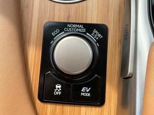 RX450h バージョンL トパーズブラウンセミアニリンレザーシート/3眼LEDヘッドライト/スペアタイヤ/純正SDナビフルセグTV/ロングラゲージマット/クリーンボックス/ラゲージロアガーニッシュメッキ/マッドガード1オーナー(16枚目)