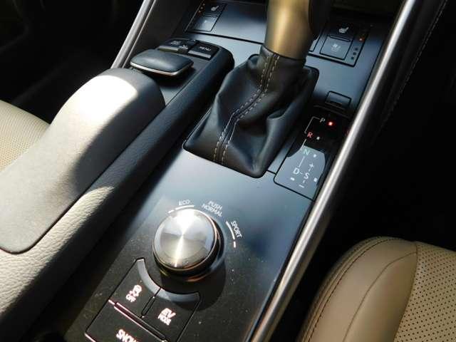 IS300h バージョンL 純正メーカーナビTV 本革エアシート シートヒーター サンルーフ 18インチアルミ BSM クリアランスソナー LEDライト(10枚目)