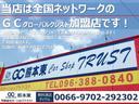 G・Lパッケージ 純正ディスプレーオーディオ TV バックカメラ パワースライドドア(22枚目)