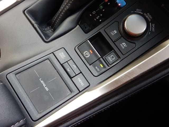 NX300h 4WD ハージョンL パノラマルーフ・革シート(9枚目)