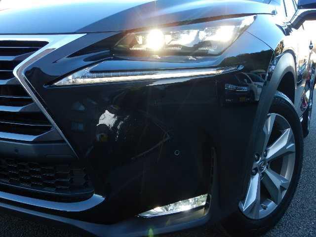 NX300h バージョンL 4WD サンルーフ ナビTV(19枚目)