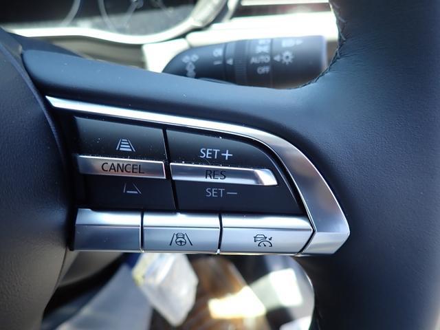 XD Lパッケージ 4WD ディーゼルターボ全方位カメラナビ(31枚目)