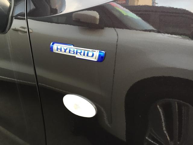 HYBRID FX(6枚目)