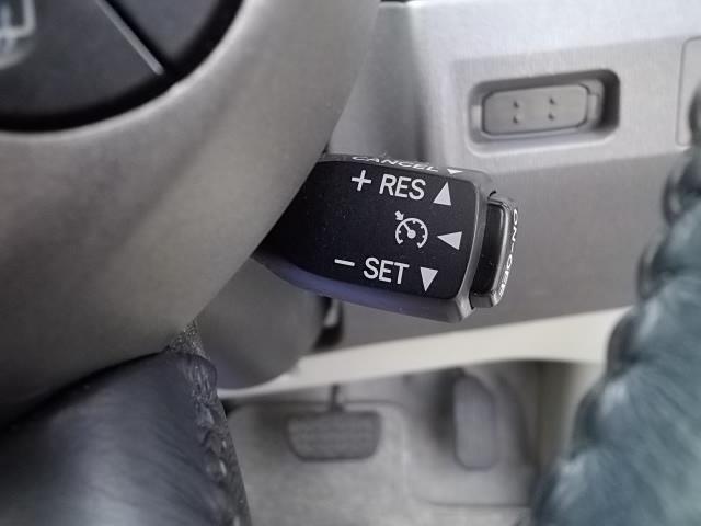 S 10thアニバーサリーエディション HDDナビ HID(20枚目)