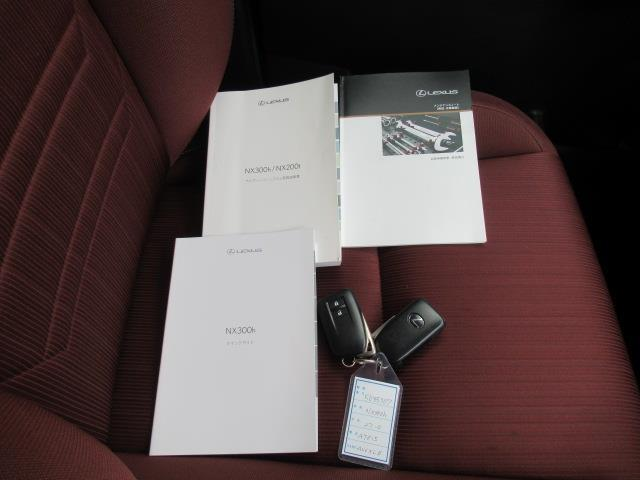 NX300h SDナビ フルセグ サイド・バックカメラ LED(20枚目)
