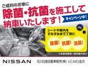 660 ハイウェイスターX ワンオーナー 純正メモリーナビ(20枚目)