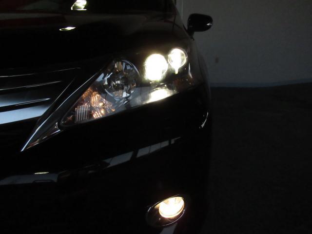 HS250h 純ナビフルセグ Bカメラ LEDヘッドライト(20枚目)