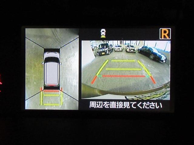 カスタムG SAII 全方位モニター 両側パワスラ(7枚目)