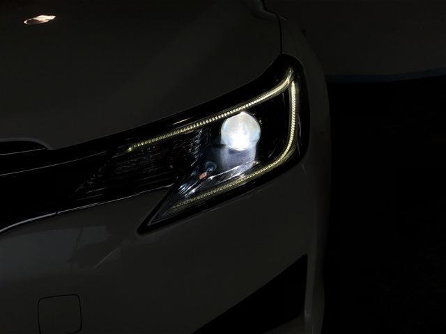 250G Fパッケージ キセノンヘッドライト オートライト(18枚目)