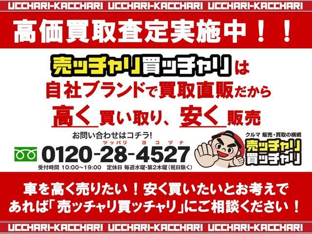 13G・Fパッケージ 社外SDナビ バックモニター(4枚目)