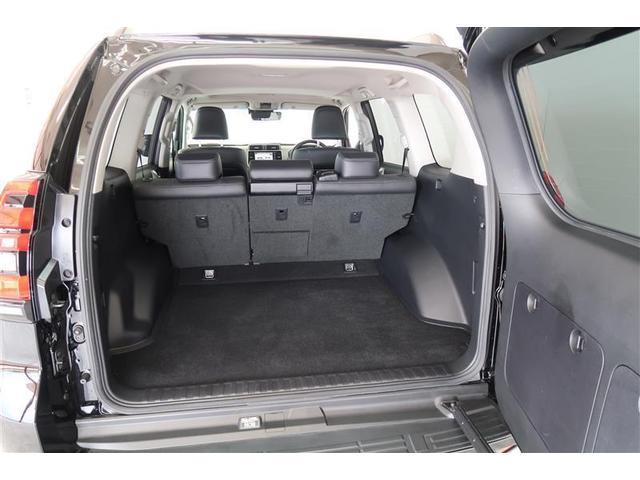 TX Lパッケージ 革シート 4WD フルセグ メモリーナビ DVD再生 バックカメラ 衝突被害軽減システム ETC LEDヘッドランプ(10枚目)