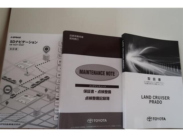 TX Lパッケージ 革シート 4WD フルセグ メモリーナビ DVD再生 バックカメラ 衝突被害軽減システム ETC LEDヘッドランプ(22枚目)