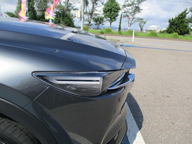 XD Lパッケージ ワンオーナー 4WD メーカー純正ナビ 全方位モニター BOSEサウンド 革シート(60枚目)