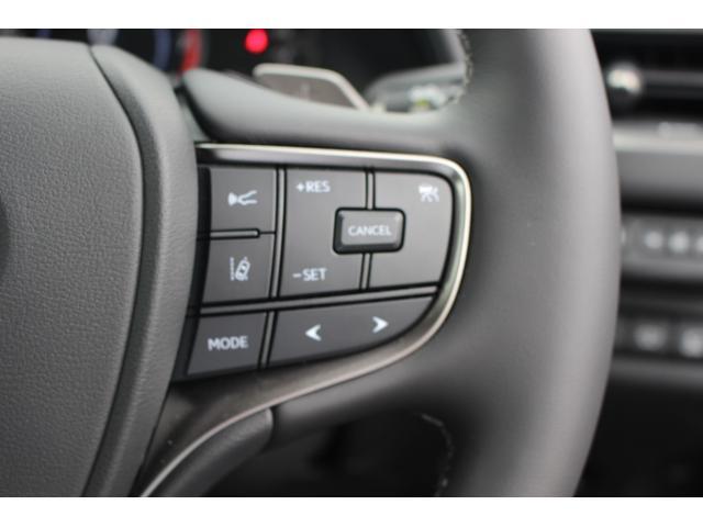 UX200 アーバンエレガンス 三眼LEDヘッドランプ +AHS+ヘッドランプクリーナー カラーヘッドUPディスプレイ ドライブレコーダー フロアマット(32枚目)