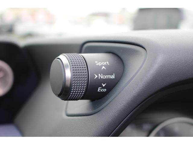 UX200 アーバンエレガンス 三眼LEDヘッドランプ +AHS+ヘッドランプクリーナー カラーヘッドUPディスプレイ ドライブレコーダー フロアマット(44枚目)