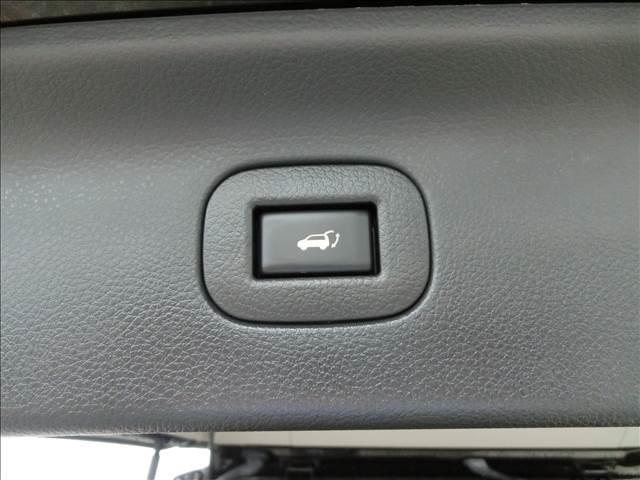 350ハイウェイスタープレミアム4WD本革HDDナビ後席M(14枚目)