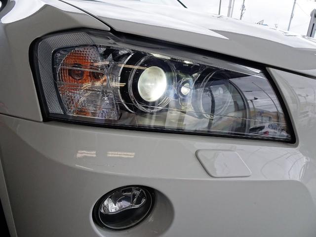 xDrive 20d ブルーパフォマンスMスポーツP 黒革(13枚目)