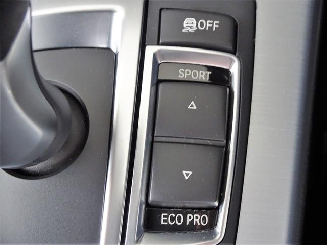xDrive 20d ブルーパフォマンスMスポーツP 黒革(24枚目)