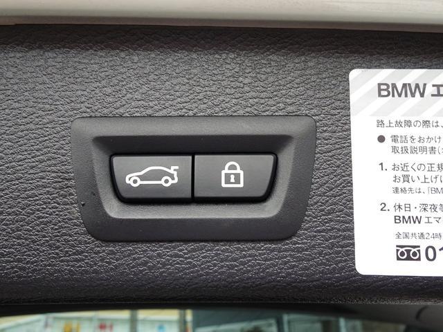 xDrive 20d ブルーパフォマンスMスポーツP 黒革(30枚目)