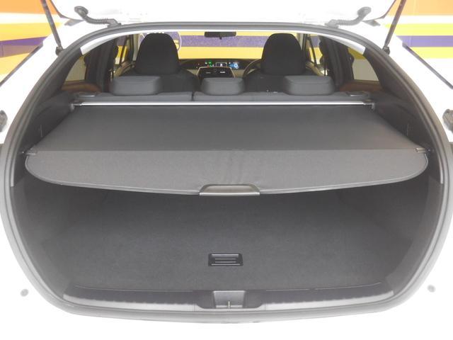 S サポカー 9インチメモリーナビ LED ETC(20枚目)