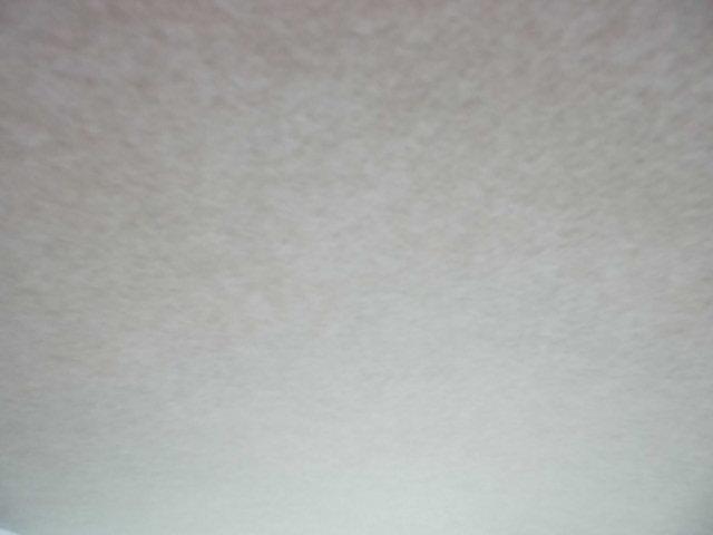 見て下さい綺麗な天井!!!嫌なシミ汚れ等なく綺麗です!大事に乗っていたのがわかる一台ですね!!