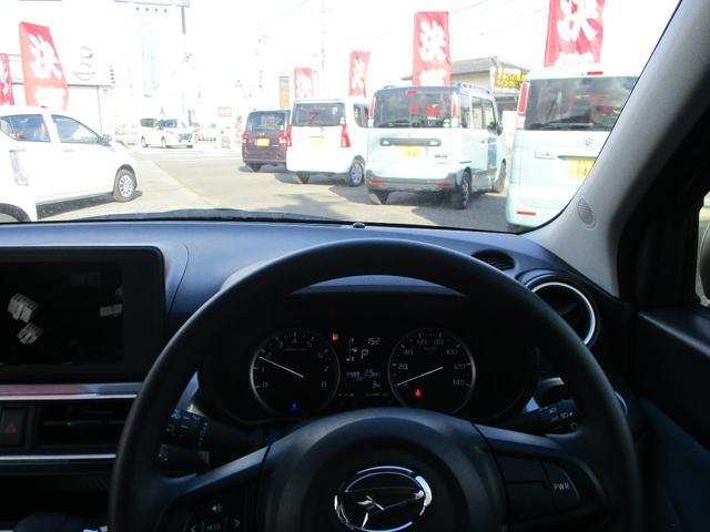 スタイルX リミテッド SAIII 届出済未使用車(14枚目)