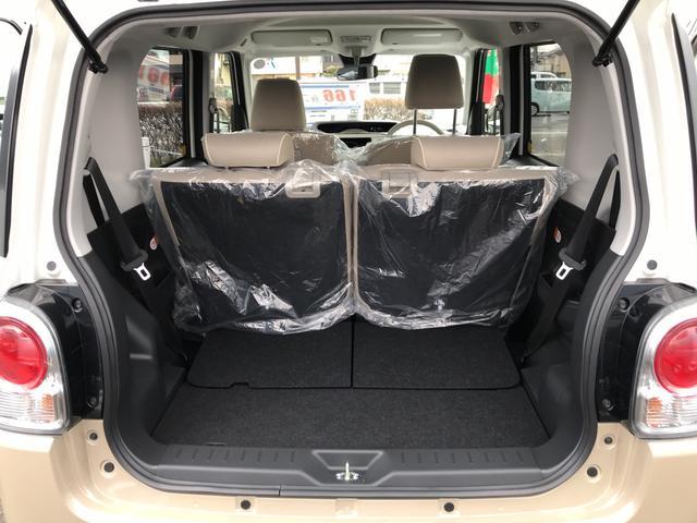 Xメイクアップリミテッド SAIII 4WD 届出済未使用車(10枚目)