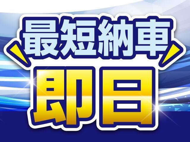 M スタイルエディション HDDナビ(4枚目)