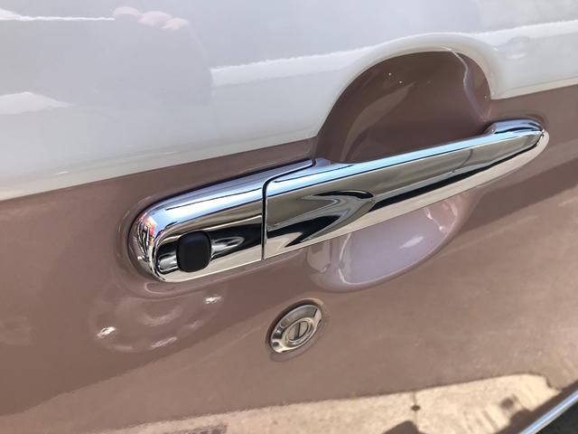 Xメイクアップリミテッド SAIII 届出済未使用車 4WD(19枚目)