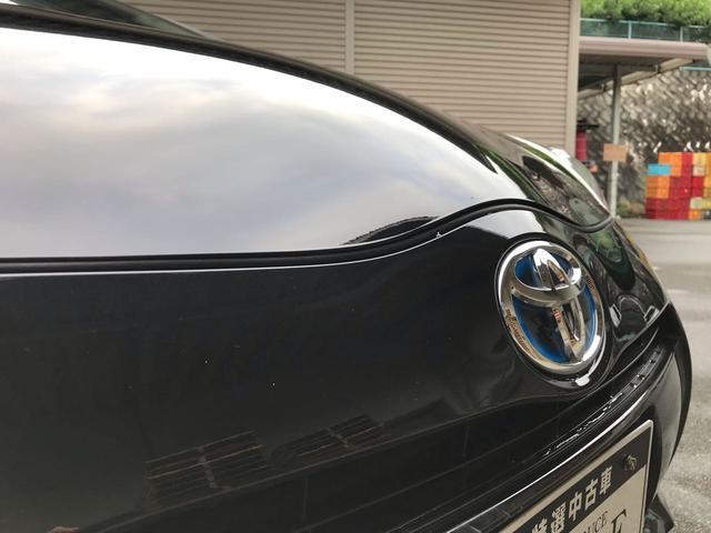 G ブラックソフトレザーセレクション 社用車(19枚目)