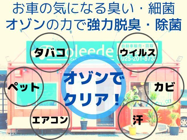24G4WD7人乗ナビテレビHIDETCバックカメラ(72枚目)